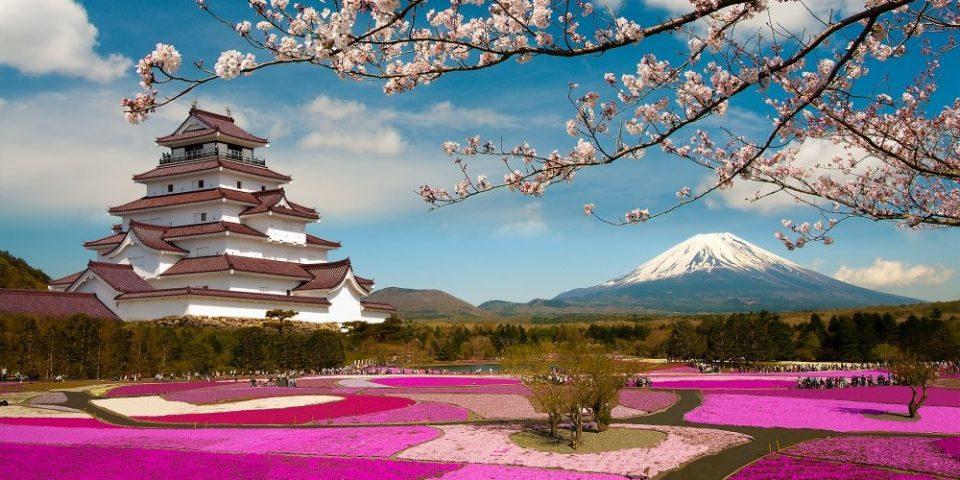 El festival Sakura en Japón